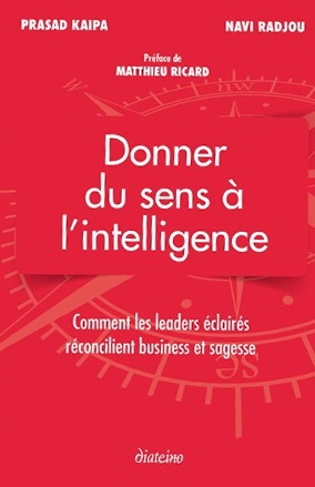 donner du sens a l intelligence
